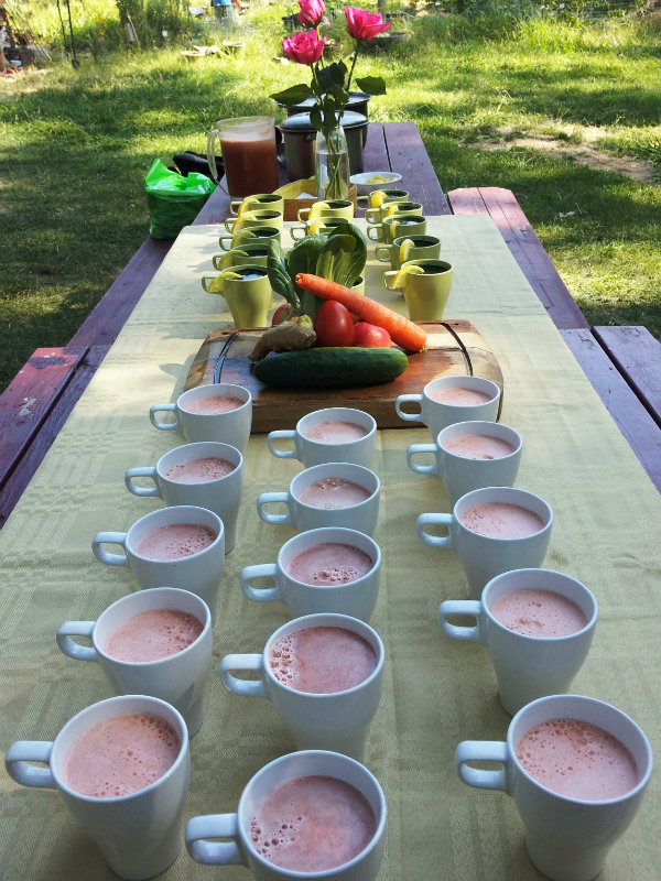 Juicing retreat with cups lined up on table ready to drink
