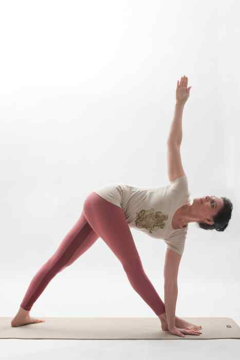 additional yoga pose twisting triangle
